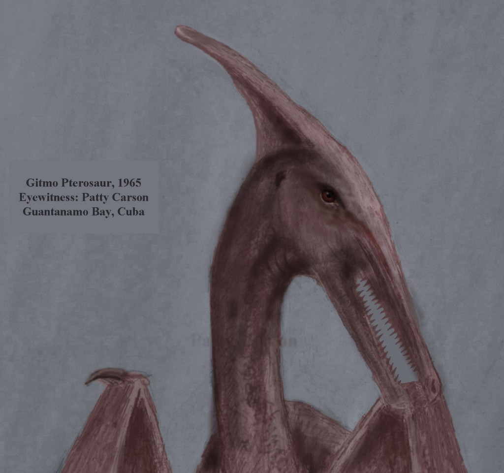 Gitmo Pterosaur of Guantanamo Bay Cuba, sighting in 1965