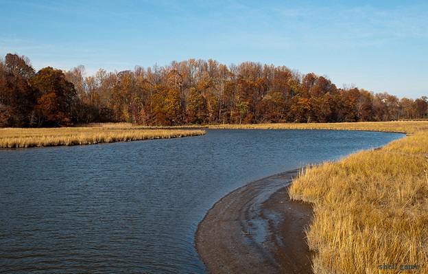 photo of Chesapeake area of Eastern USA - photo by shell game