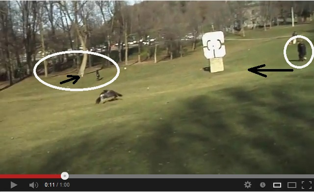 "One frame of the video ""Golden Eagle Snatches Kid"" shows shadows in almost opposite directions"