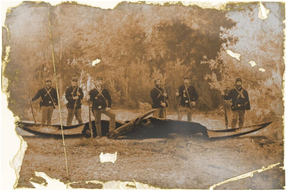 More credible of the two apparent Civil War photos of a large pterosaur and some soldiers