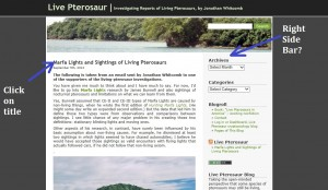 "On the cryptozoology blog ""Live Pterosaur"" you can make a comment on a post or on a page; give your opinion"
