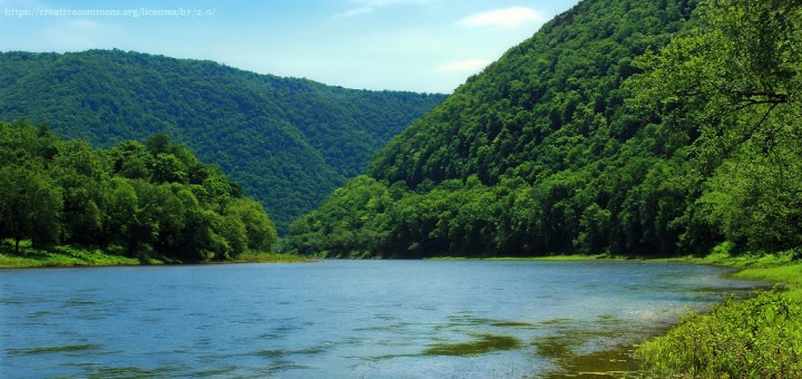 forested area around the Susqauehanna River in PA