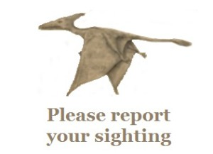 Please report your sighting - You can be anonymous if you like