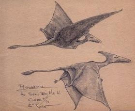 "The eywitness in Columbus, Ohio, described the flying creature. It had a shorter tail that these two ""Gitmo"" pterosaurs"
